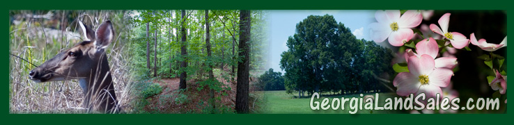 Georgia Land For Sale, Land for sale in Georgia and South